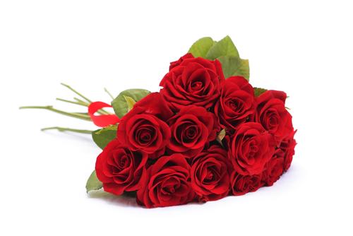 Red Rosed