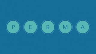 Illustration of the word PERMA