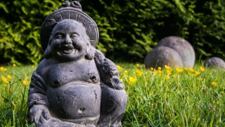 Smiling Buddha in Grass with Yellow Flowers