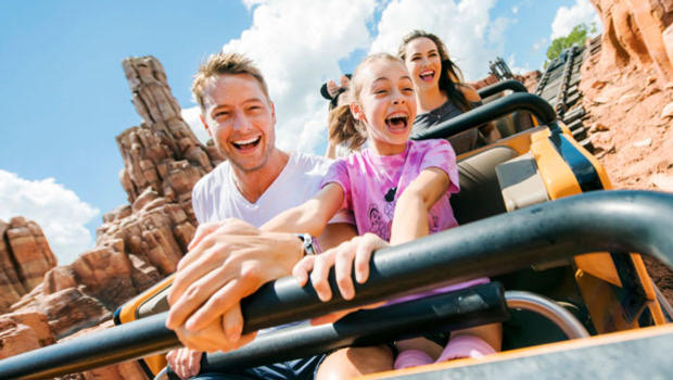 Image result for disney ride family