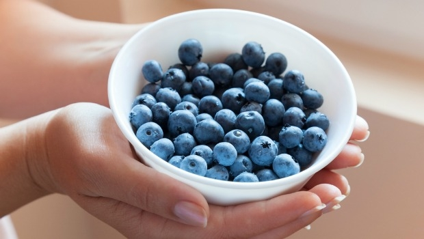 Hands holding bowl of blueberries