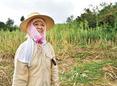 Woman working in the fields in Okinawa