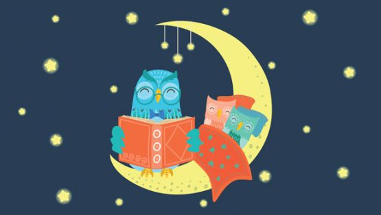 Owl reading a bed time story on the moon